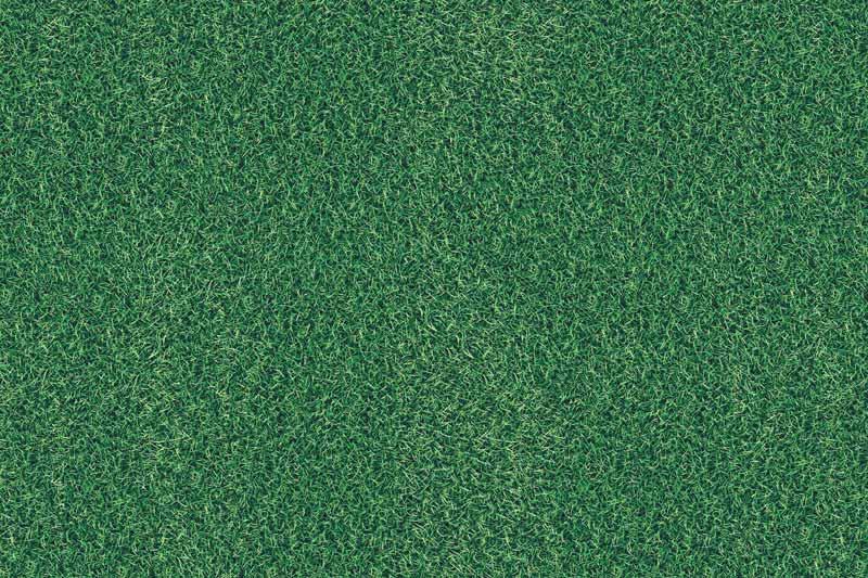 Messeteppich bedruckt Rasen lang