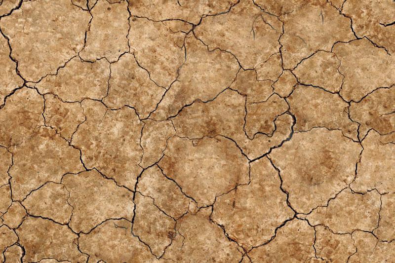Messeteppich bedruckt Dürre